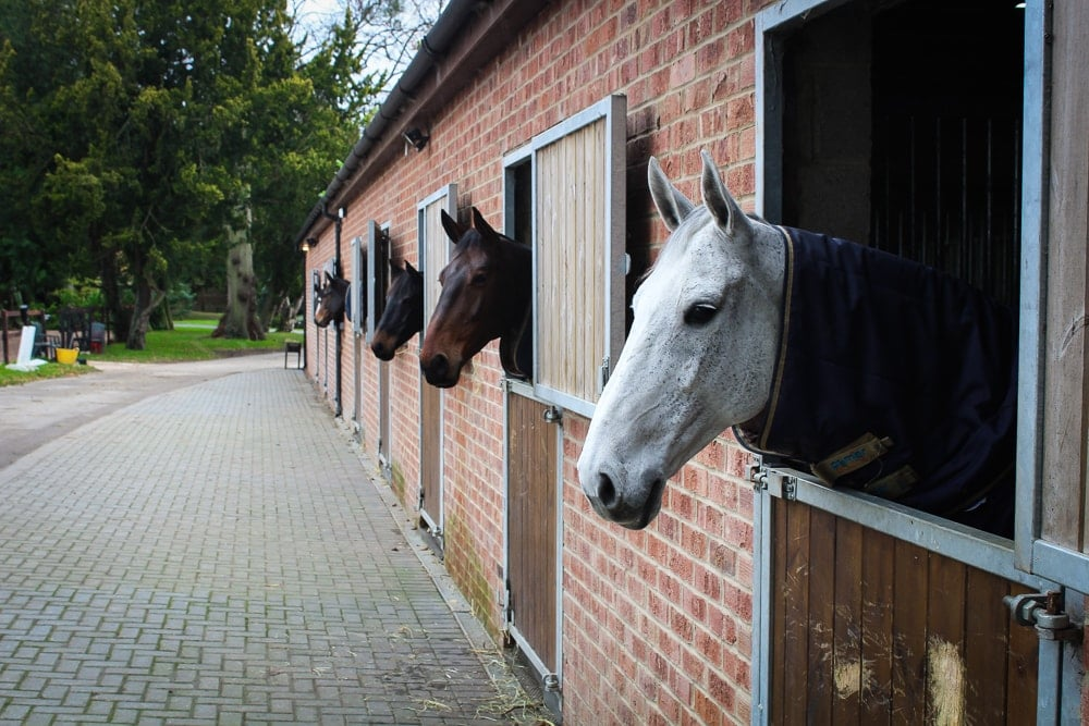 Stables at Highnam Court Equine